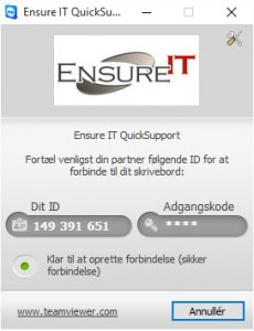 Ensure IT Fjernsupport